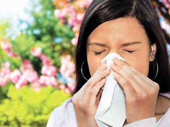 Allergiaenyhítő Táplálékok